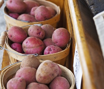Potato Nutrition and Health
