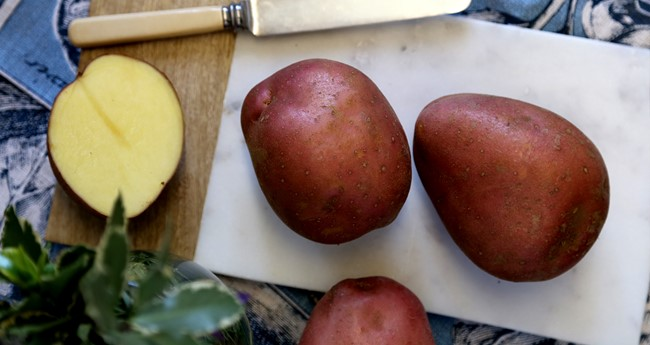 Rooster Potatoes Information | Love Potatoes